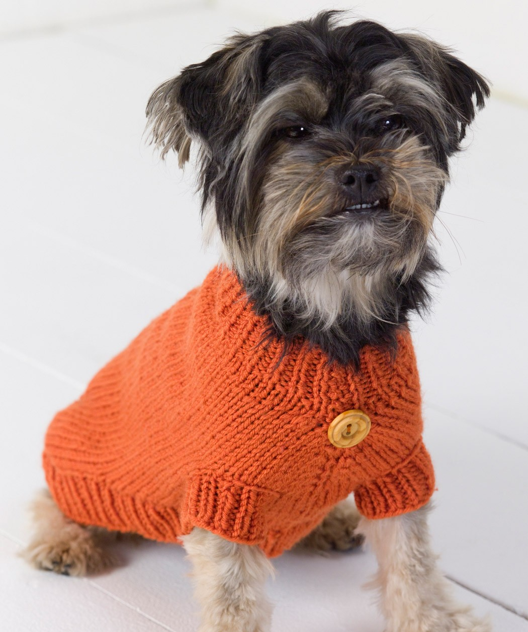 Buttoned Dog Sweater Knitting Pattern