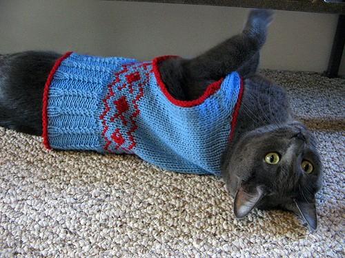 Cat Knitting Sweater Pattern