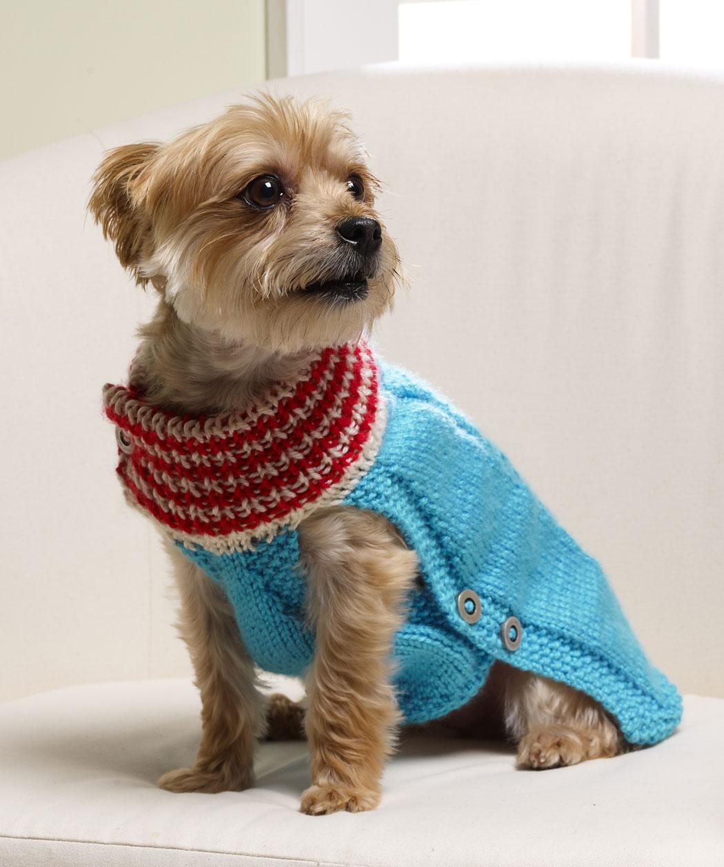 Holiday Dog Sweater Knitting Pattern
